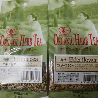 セイカツノキ(生活の木)のハーブティー エルダーフラワー&エキナセア(茶)