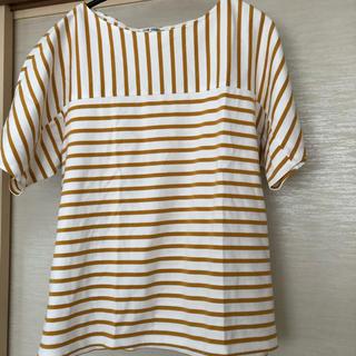 ニジュウサンク(23区)の23区(Tシャツ(半袖/袖なし))