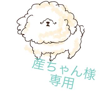 キスマイフットツー(Kis-My-Ft2)の産ちゃん様 専用ページ(アート/エンタメ/ホビー)