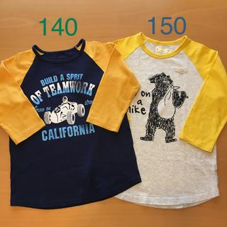ベルメゾン(ベルメゾン)の BELLE  MAISON  GITA   Tシャツ  2枚セット(Tシャツ/カットソー)