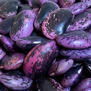 ☆懐かしい味☆ 乾燥紫花豆 約500g 青森県産 2018年産(野菜)