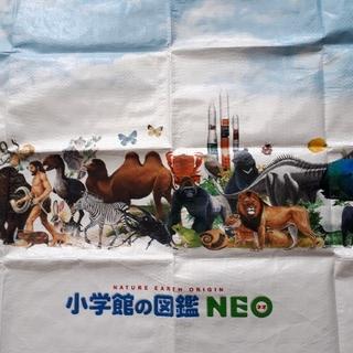 ショウガクカン(小学館)の小学舘の図鑑 NEO レジャーシート(その他)