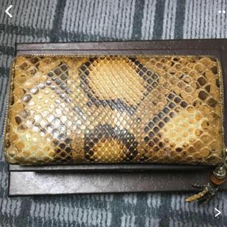 グッチ(Gucci)のパイソン長財布(財布)