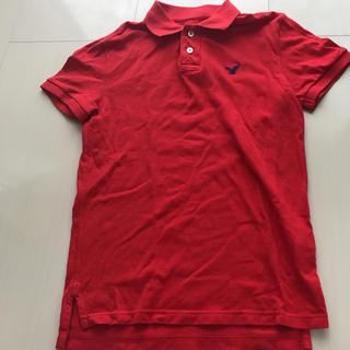 アメリカンイーグル(American Eagle)のアメリカンイーグル ポロシャツ (ポロシャツ)