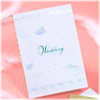 ホールマーク 結婚式招待状 フェザーブルー(カード/レター/ラッピング)