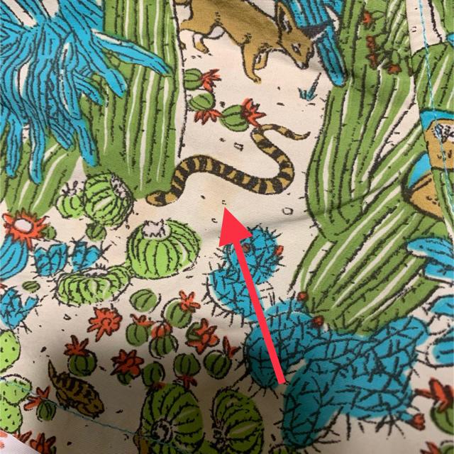 patagonia(パタゴニア)のパタゴニア バギーズショーツ キッズ/ベビー/マタニティのキッズ服 男の子用(90cm~)(パンツ/スパッツ)の商品写真