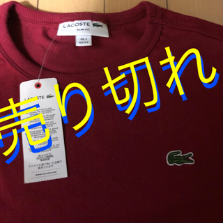 ラコステ(LACOSTE)のラコステ レディース Tシャツ❣️期間限定価格  本日限定価格(Tシャツ(半袖/袖なし))