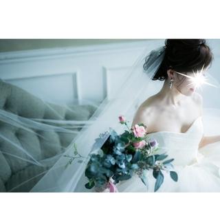 ヴェラウォン(Vera Wang)のトリートドレッシング ウェディングベール(ウェディングドレス)