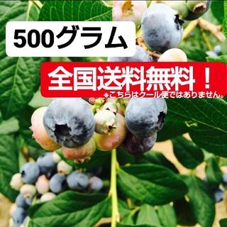 新鮮ブルーベリー 500グラム(フルーツ)