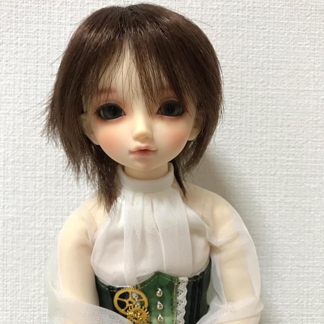 VOLKS(ボークス)の2個 スーパードルフィーMSD サイズ ウィッグ2個 ハンドメイドのぬいぐるみ/人形(人形)の商品写真