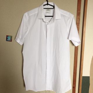 ネクスト(NEXT)のnext半袖ワイシャツ*ホワイト(シャツ)