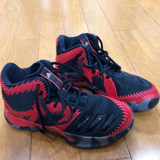 adidas - アディダス  バスケシューズ.☆.。.:*・°