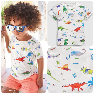 NEXT - NEXT☆ホワイト・恐竜コットンTシャツ
