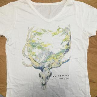 ビームス(BEAMS)のACIDMAN Tシャツ XSサイズ(ミュージシャン)