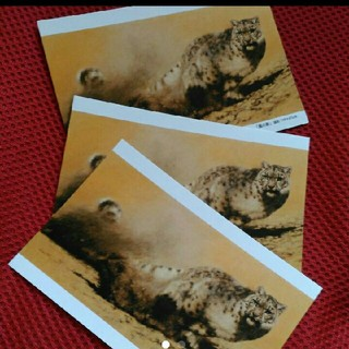 原田篤 ポストカード 3セット(印刷物)