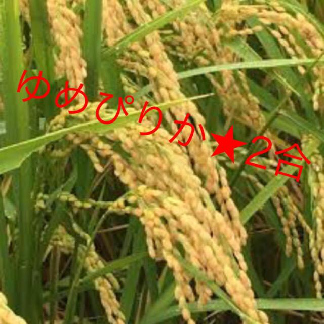 ゆめぴりか★2合 食品/飲料/酒の食品(米/穀物)の商品写真