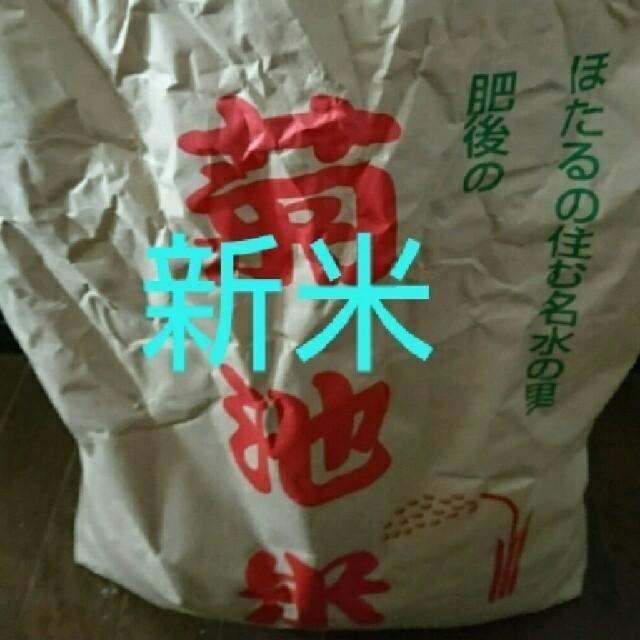 新米、お米、白米、お得、美味しい、令🎵和 食品/飲料/酒の食品(米/穀物)の商品写真