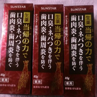 サンスター(SUNSTAR)のサンスター薬用塩歯みがき粉3本(歯磨き粉)