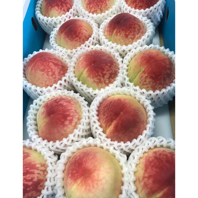 3 和歌山の桃 食品/飲料/酒の食品(フルーツ)の商品写真