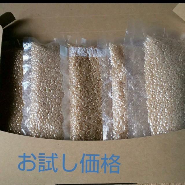 【福井県産】コシヒカリ 食品/飲料/酒の食品(米/穀物)の商品写真