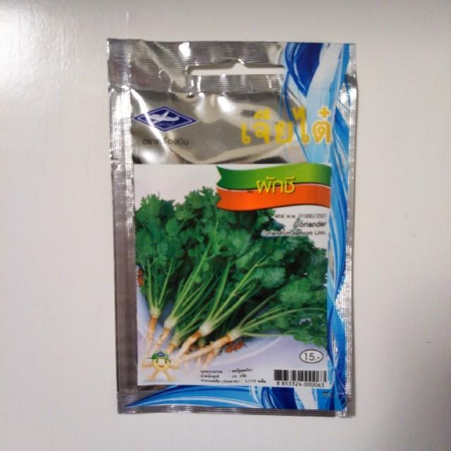 パクチー(コリアンダー)の種(タイ産) 食品/飲料/酒の食品(野菜)の商品写真