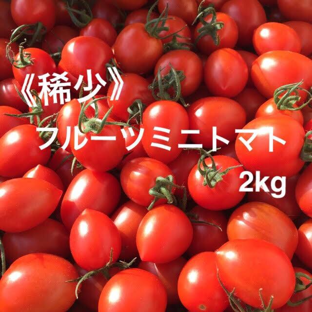 ♦︎6月末まで♦︎ 《稀少》 フルーツミニトマト 2kg  ミニトマト トマト 食品/飲料/酒の食品(野菜)の商品写真