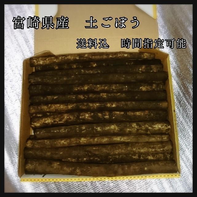 新ごぼう!宮崎県産です。 食品/飲料/酒の食品(野菜)の商品写真