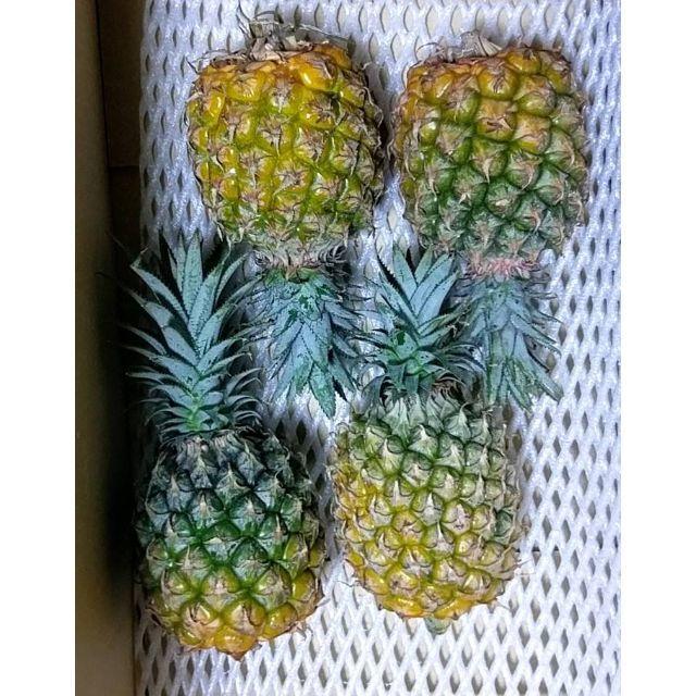 甘い!手でちぎって食べる!沖縄産人気のスナックパインかわいいサイズ4玉 食品/飲料/酒の食品(フルーツ)の商品写真
