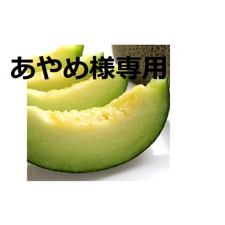 あやめちゃん様専用 ③タカミメロン・4玉入りの1箱!(フルーツ)