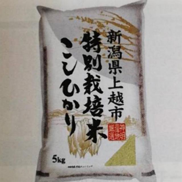 新潟県上越市特別栽培米こしひかり5kg 食品/飲料/酒の食品(米/穀物)の商品写真
