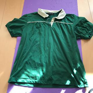 シマムラ(しまむら)の襟付き  Tシャツ  大きいサイズ(Tシャツ(半袖/袖なし))