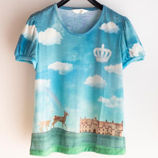 ジェーンマープル(JaneMarple)のジェーンマープル Tシャツ カットソー(Tシャツ(半袖/袖なし))
