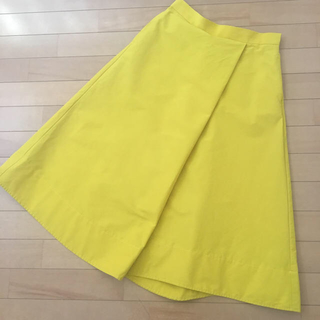 Demi-Luxe BEAMS - 2017SS Demi-Luxe BEAMS  フレアスカート