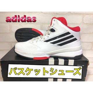 adidas - adidas アディダス バスケットシューズ