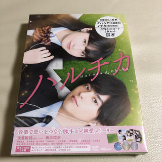 セクシー ゾーン(Sexy Zone)のハルチカ DVD(日本映画)