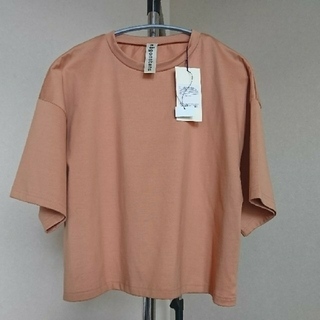 エンフォルド(ENFOLD)のnagonstans ナゴンスタンス 《レアカラー》Tシャツ シナモン 38(Tシャツ(半袖/袖なし))