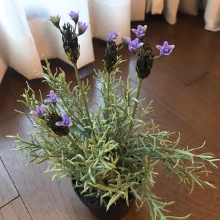 イケア(IKEA)のダミー 観葉植物 IKEA ラベンダー 鉢植え(置物)