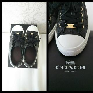 コーチ(COACH)のコーチ スニーカー 黒 23.5 プレゼント ハワイ 旅行 リゾート(スニーカー)