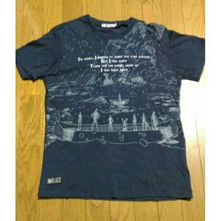 ユニクロ(UNIQLO)のUNIQLO-ONEPIECEコラボTシャツ(さよならメリー)(その他)