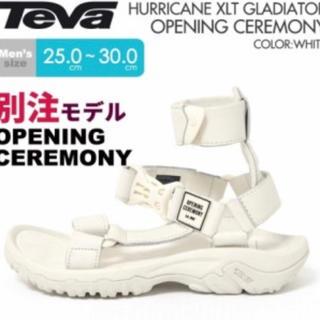 テバ(Teva)のオープニングセレモニー TeVa 別注モデル サンダルプレミア ハリケーン(サンダル)