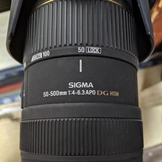 SIGMA - SIGMA APO DG 50-500MM OS無し キャノン用