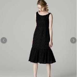 グレースコンチネンタル(GRACE CONTINENTAL)の新品 グレースコンチネンタル  ワンピース ドレス レディース(ミディアムドレス)