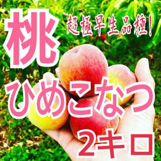 桃(超極早生品種ひめこなつ)2kg