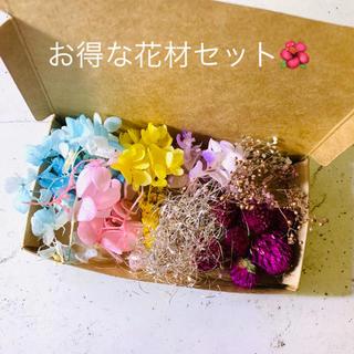 花材セット 詰め合わせ✼*✲*✻*(ドライフラワー)