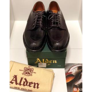 Alden - 【新品・未使用】Alden オールデン Vtip バーガンディコードバン 7 D