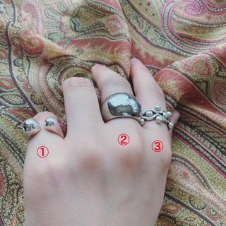 エトロ(ETRO)の【即完売商品】EMbellire by AKKI Silver 925 指輪 (リング(指輪))