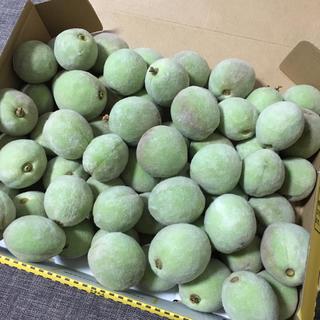 若桃 1.3キロ