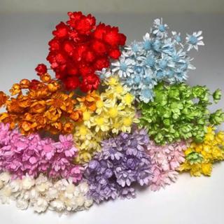 スターフラワー  ミニ ドライフラワー 花材レジン素材ハーバリウムボールペンに*(ドライフラワー)