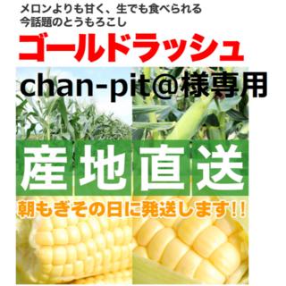 chan-pit@様専用  ②クール便発送の「ゴールドラッシュ」5本~7本!(野菜)
