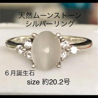 美品✨天然ムーンストーン シルバーリング 約20.2号(リング(指輪))